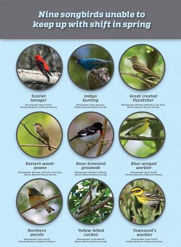 birdsclimatechange