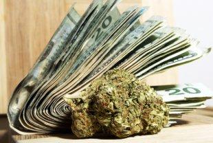 marijuana_