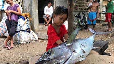 overfishingphil