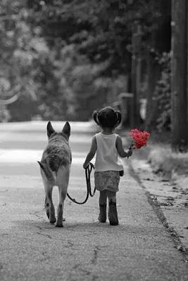 foreverfriend