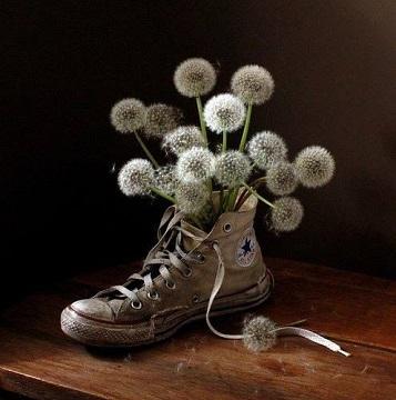 dandelionshoe